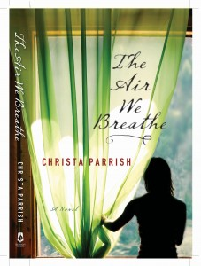 The Air We Breathe book cover