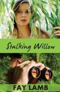 Stalking Willow book cover